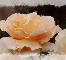 Layered Rose by Ricky Pfeiffer