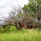 Dry Fork Homestead by Kim Barton