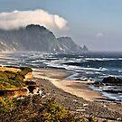 The Oregon Coast by TeresaB
