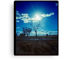 Turn your face to the sun..... Canvas Print