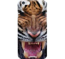 Tiger Cat iPhone Case/Skin