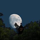 Moonlight by newfan