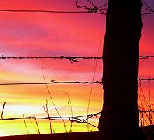 Sunset Post by Penny Kittel
