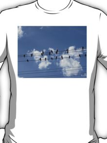 46 Birds On A Wire T-Shirt