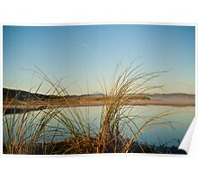 Wilson Inlet Mouth with reeds Poster