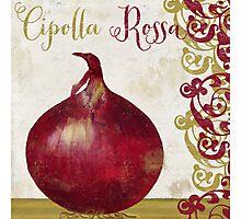 Cucina Italiana Cipolla Onion Photographic Print