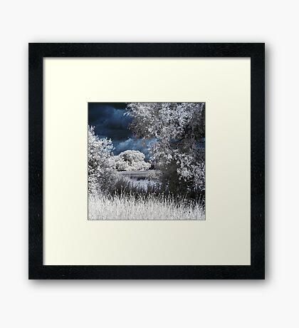 Utopia Framed Print