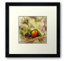Who You Lookn' At? Framed Print