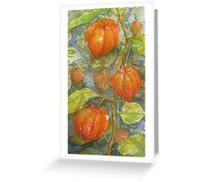 Garden Lights Greeting Card