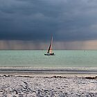 Approaching Storm by djphoto