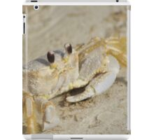 Ghost Crab, As Is iPad Case/Skin