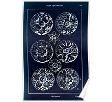 A Handbook Of Ornament With Three Hundred Plates Franz Sales Meyer 1896 0199 Free Ornaments Rosette Inverted Poster