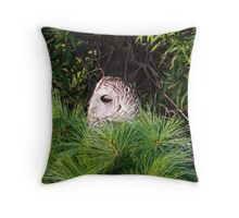 Barred owl in pine tree Throw Pillow