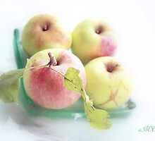 Summer apples 1 by aMOONy