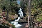 Brilliant Spring Day At Ozone Falls (as-is) by Gene Walls