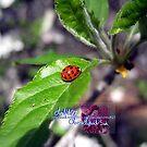 little lady by LoreLeft27
