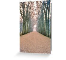 Chenonceau, the Avenue Greeting Card