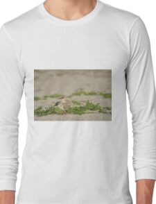 Snowy Plover Chick with Mom, As Is Long Sleeve T-Shirt