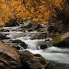 Autumn River by David Kocherhans