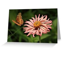 Flutter By Greeting Card