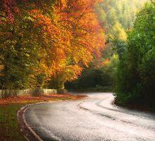 On the Road to Winter by Alan Watt