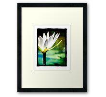 White Lilly - Elegant Beauty Framed Print