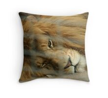 Caged Lion Throw Pillow