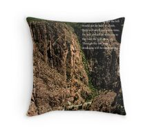 Life's Valley of trials Throw Pillow
