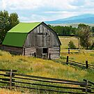 old barn with a new roof by Lynne Prestebak
