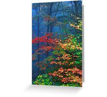 MISTY AUTUMN FOREST Greeting Card
