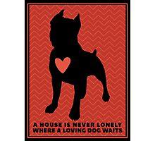"Pit Bull Terrier ""Loving Dog"", Red Chevron Photographic Print"
