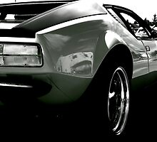 1973 Pantera in Mono by Linda Bianic