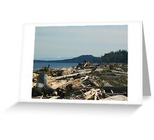 Fallen trees abound Greeting Card