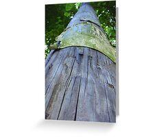 Telephone Pole Greeting Card
