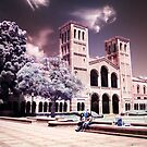 Royce Hall by Tony Yu