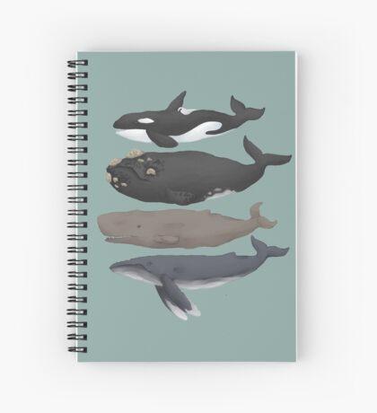 Whale Chart Spiral Notebook