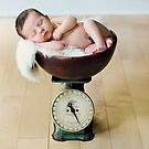 Weighing In... by Kristen  Byrne