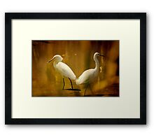 Strolling By Framed Print