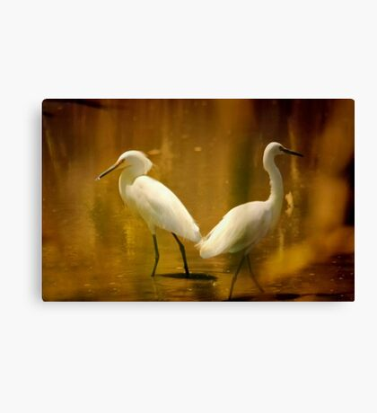 Strolling By Canvas Print