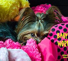 Baby's World by Gail Bridger