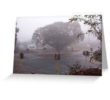 Moreton Bay Fig Tree in Fog Greeting Card