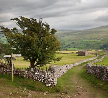 The Pennine Way Crossing Kisdon Fell by SteveMG
