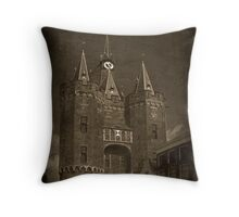 Web scam: The past present. Throw Pillow