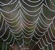 Strands of Pearls by RebeccaBlackman