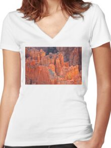 Seeing the forest for the trees Women's Fitted V-Neck T-Shirt