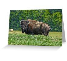 Buffalo Liepers Fork Greeting Card