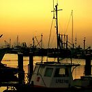 Pescadores by Alfredo Estrella