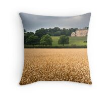 Cusworth Hall, Doncaster Throw Pillow