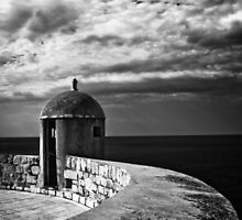 Dubrovnik City walls by Mark  Dodds