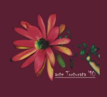 Protea, art in a T by Melinda  Ison - Poor